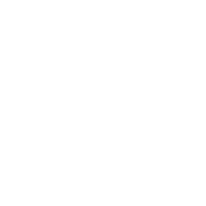 vida wines